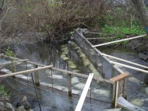 New smolt counting fence