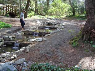 Weirs installed on Puntledge Creek