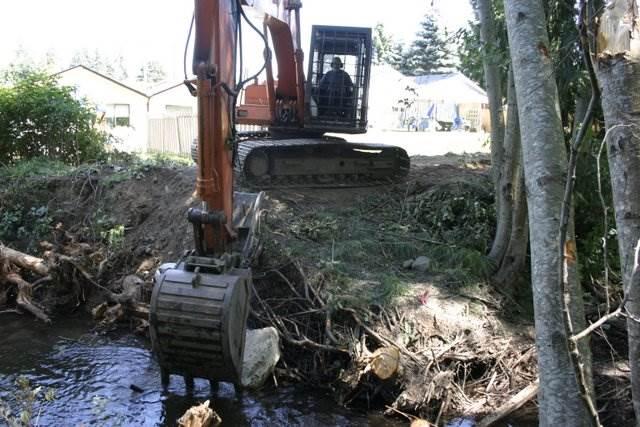 Arden Creek Restoration Project